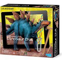 4M Industrial Development Dinosaurus skládací kostra Stegosaurus