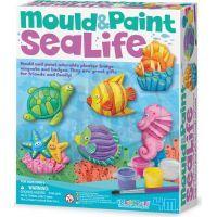 4M Sádrové odlitky Podmořský svět