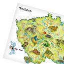 Albi Kouzelné čtení Česká republika 4