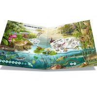 Albi Kouzelné čtení Kniha Hravá přírodověda 3