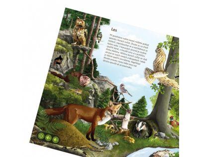 Albi Kouzelné čtení Svět zvířat