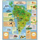 B4u Publishing Atlas zvířat pro děti 4