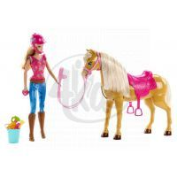 Barbie Barbie a Tawny (MATTEL BJX85) 2