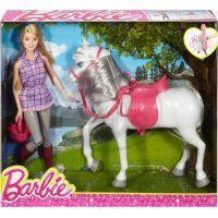 Mattel Barbie panenka s bílým koněm 6