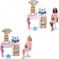 Barbie salón krásy herní set s běloškou