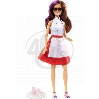 Barbie Tajný team - DHF07 Teresa