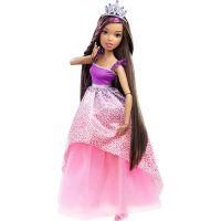 Barbie Vysoká princezna s dlouhými vlasy bruneta 2