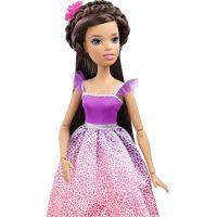 Barbie Vysoká princezna s dlouhými vlasy bruneta 3