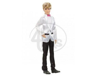 Barbie W2864 - Ken Ženich