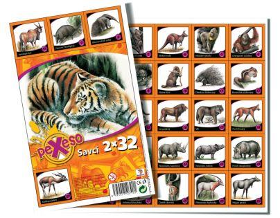 Bonaparte pexeso 32 Savci