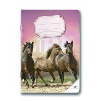 Bonaparte Sešit A5/523 Koně, 20 listů linkovaný