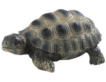 Bullyland 63554 Želva mládě