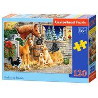 Castorland Puzzle 120 dílků Setkání přátel ve stáji
