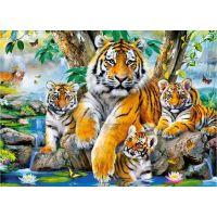 Castorland Puzzle 120 dílků Tygři u řeky