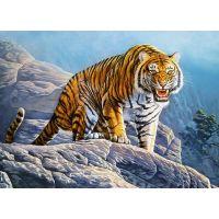 Castorland Puzzle 180 dílků Tygr na skále