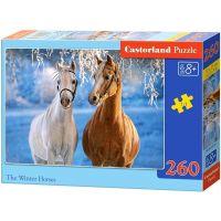 Castorland Puzzle Koně v zasněžené krajině 260 dílků