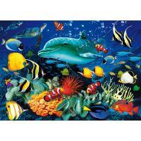 Clementoni Puzzle Magic 3D 1000 dílků Delfín 2