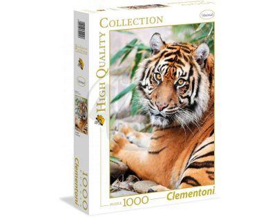 Clementoni Puzzle Tygr Sumaterský 1000d