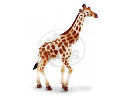Collecta Žirafa africká