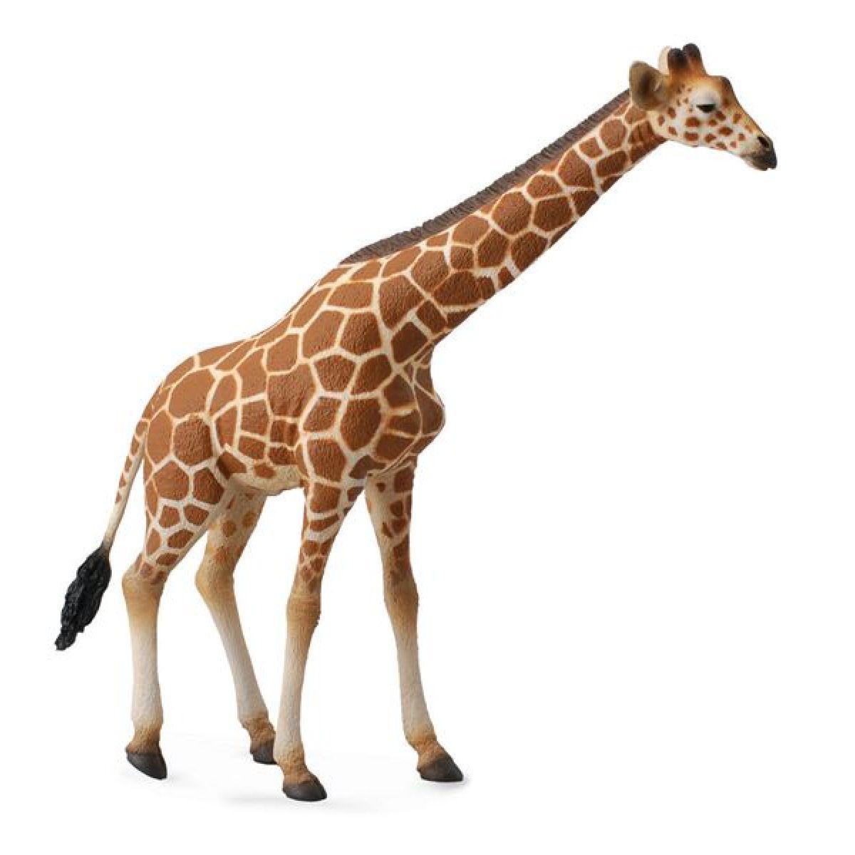 Collecta Žirafa
