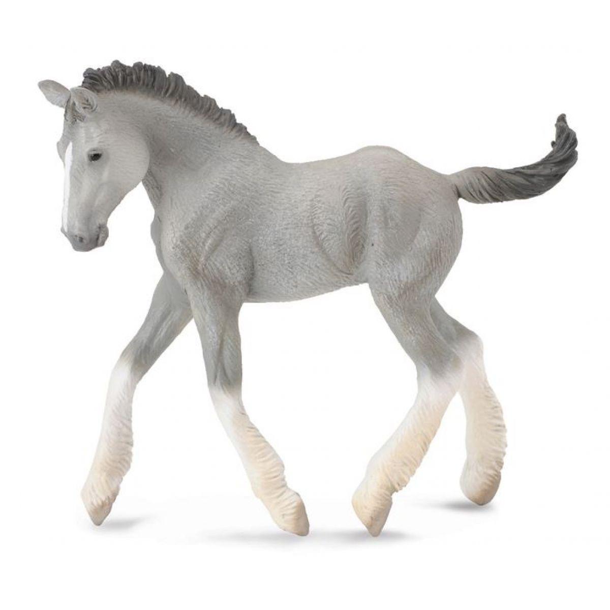 Collecta Shirský kůň hříbě šedé