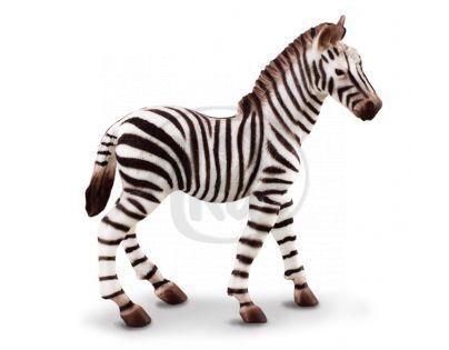 Collecta Zebra hříbě