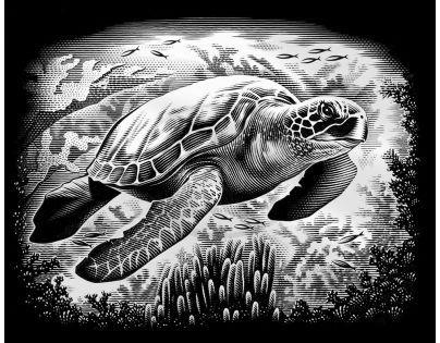 Creatoys Reeves Škrábací obrázek stříbrný 20 x 25 cm - Želva