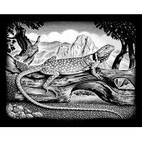 Creatoys Reeves Škrábací obrázek stříbrný 20 x 25 cm - Ještěrka
