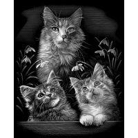 Creatoys Reeves Škrábací obrázek stříbrný 20 x 25 cm - Kočky