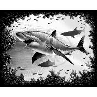 Creatoys Reeves Škrábací obrázek stříbrný 20 x 25 cm - Žralok