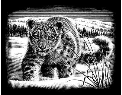 Creatoys Reeves Škrábací obrázek stříbrný 20 x 25 cm - Sněžný leopard
