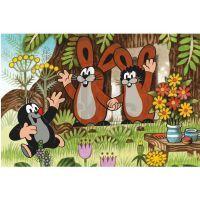 Dino 643093 - Kostky Krtek a přátelé dřevo (6ks) 3