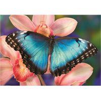 Dino Puzzle Motýľ 500 dielikov