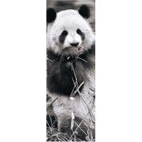 Dino Puzzle Panda v trávě Panoramic 1000 dílků