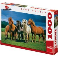 Dino Puzzle Islandští koně 1000 dílků
