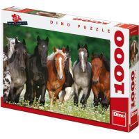 Dino Puzzle Koně na louce 1000 dílků