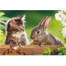 Dino Puzzle koťátko a kamarádi 2x48 dílků 2