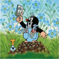 Dino Puzzle Krtek a kalhotky 3 x 55 dílků 3