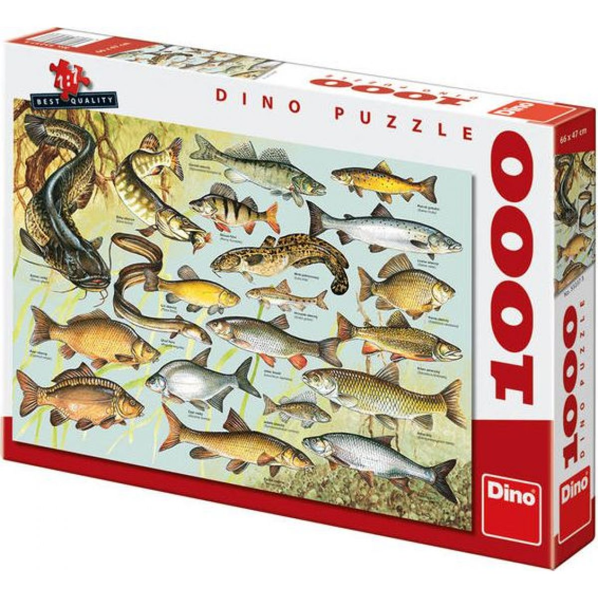 Dino Puzzle Ryby 1000 dílků