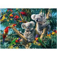 Dino Puzzle Secret Collection Koaly 1000 dílků 2