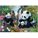 Dino Puzzle Secret Collection Pandy 1000 dílků 2