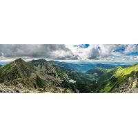 Dino Puzzle Roháče Panoramic 2000 dílků