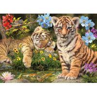 Dino Mláďata tygrů 1000 secret collection puzzle