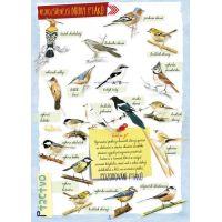 Albatros Dobrodružství v přírodě 3
