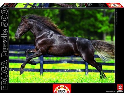 Educa Puzzle Černý kůň 500 dílků