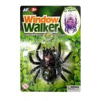 EPline Pavouk na sklo černý