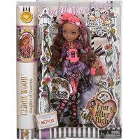 Mattel Ever After High Bouřlivé jaro panenka - Cedar Wood 3
