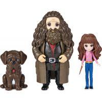 Spin Master Harry Potter Trojbalení přátel Hermiona, Hagrid a Tesák