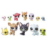 Hasbro Littlest Pet Shop Velké balení zvířátek E2072