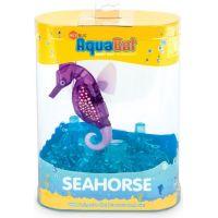 Hexbug Aquabot Mořský koník - fialový 2